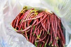 Organische rote Langbohnenbohnen Stockfotos