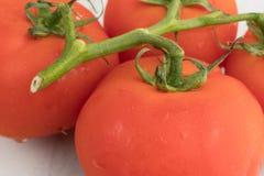 Organische rote Tomaten auf einem Marmorschneidebrett schließen Ansicht Lizenzfreie Stockbilder