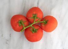 Organische rote Tomaten auf einer Draufsicht des Marmorschneidebretts Lizenzfreies Stockbild