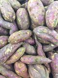 Organische süße Kartoffeln Stockfoto
