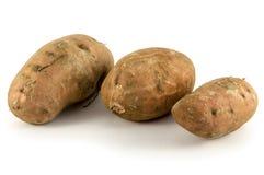 Organische Süßkartoffeln auf weißem Hintergrund Lizenzfreie Stockbilder