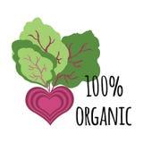organische samenvatting stock illustratie
