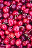 Organische Sommerzeit-Kirschen Stockfotos