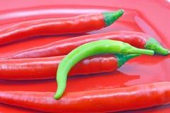 Organische Spaanse peper   peper Royalty-vrije Stock Foto's
