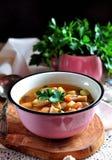 Organische Suppe DDelicious mit Huhn, Bohnen, Zwiebeln, Tomaten, Pilzen und Petersilie Stockbild