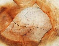 Organische textuur Stock Foto's