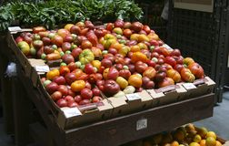 Organische tomaten in kartondozen Royalty-vrije Stock Foto