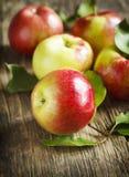 Organische verse appelen met bladeren Stock Foto