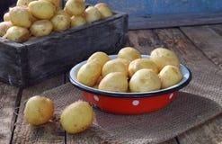 Organische verse de zomergroenten - eerste oogst van organisch gekweekte nieuwe aardappels op houten achtergrond Gezond voedsel D royalty-vrije stock afbeeldingen
