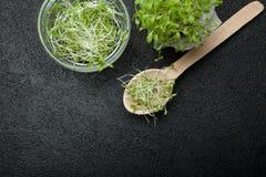 Organische verse micro- greens zijn rijk aan anti-oxyderend en vitaminen op een zwarte achtergrond, lege ruimte voor tekst royalty-vrije stock foto's