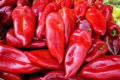 Organische verse peper Stock Foto