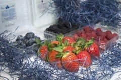 Organische vruchten Stock Afbeeldingen