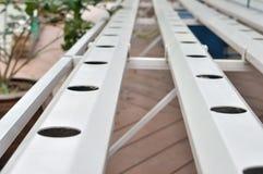 Organische Wasserkulturgarteneinrichtung Lizenzfreies Stockbild