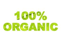 100% Organische woordkunst met groene bladoppervlakte Stock Foto