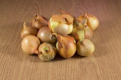 Organische Zwiebel. Lizenzfreies Stockbild