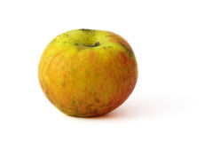 Organischer Apfel Lizenzfreie Stockbilder
