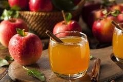 Organischer Apfelwein mit Zimt Lizenzfreie Stockfotos