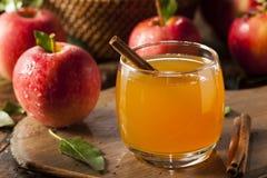 Organischer Apfelwein mit Zimt Lizenzfreie Stockbilder