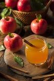 Organischer Apfelwein mit Zimt Lizenzfreie Stockfotografie