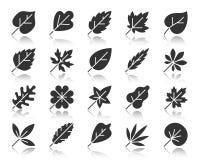 Organischer Blattschwarzschattenbildikonen-Vektorsatz lizenzfreie abbildung