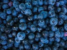 Organischer Blaubeerhintergrund Stockfoto