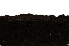 Organischer Boden Stockfotografie