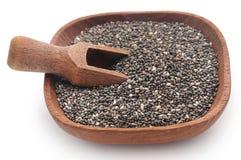 Organischer Chia Seed lizenzfreie stockfotos