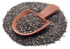 Organischer Chia Seed, Supernahrung lizenzfreies stockbild