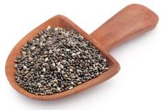 Organischer Chia Seed, Supernahrung stockbild