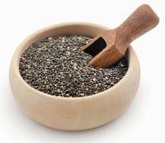 Organischer Chia Seed lizenzfreie stockbilder