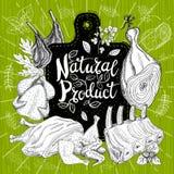 Organischer Frischmarkt des Naturproduktes, Logodesign, gesunder Lebensmittelladen lizenzfreie stockbilder