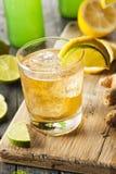Organischer Ginger Ale Soda lizenzfreie stockbilder
