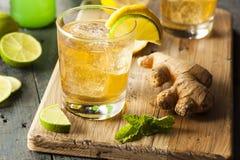Organischer Ginger Ale Soda stockbilder
