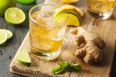 Organischer Ginger Ale Soda lizenzfreies stockfoto