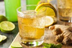 Organischer Ginger Ale Soda stockfotografie