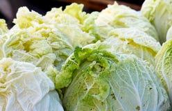 Organischer Kopfsalat am Landwirte ` Markt Stockbild