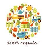 Organischer Landwirtschaftsvektorhintergrund Lizenzfreie Stockbilder