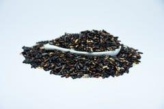 Organischer Reisbeerenreis auf weißem Hintergrund stockbilder