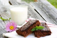 Organischer Schokoladenkuchen und Milch Stockfotografie