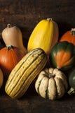 Organischer sortierter Autumn Squash Stockfoto