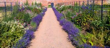 Organischer ummauerter Garten Stockfotos