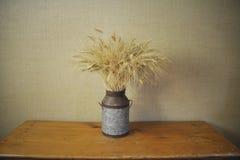 Organischer Weizen Lizenzfreie Stockbilder