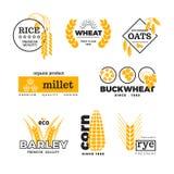 Organischer Weizengetreideanbaulandwirtschaftsvektor-Logosatz Stockbilder