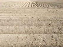 Organisches Ackerland bereit zum Pflanzen Stockbilder