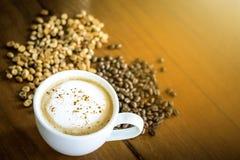 Organisches Arabica Kaffee des thailändischen Elefantscheißekaffees stockbild