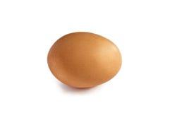 Organisches Ei Stockbild