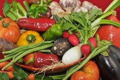 Organisches Gemüse mit rotem Hintergrund Stockfotos