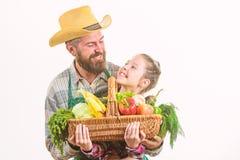 Organisches Gem?se des Familienbauernhofes B?rtiger rustikaler Landwirt des Mannes mit Kind E stockbild