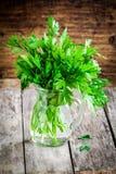 Organisches neues Bündel Petersilie in einem Glasgefäß Lizenzfreie Stockbilder