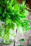 Organisches neues Bündel Petersilie in einer Glasgefäßnahaufnahme Stockbilder